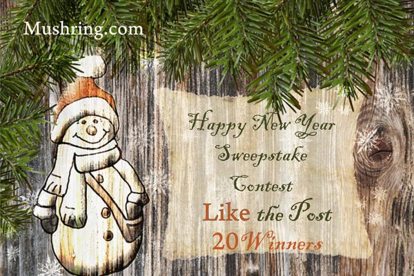 """""""Happy New Year"""" Sweepstake Contest"""
